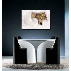 Radiateur tableau imprim sur verre tableau chauffant for Tableau imprime sur verre